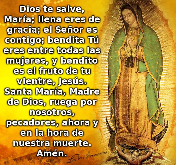oracion salve maria