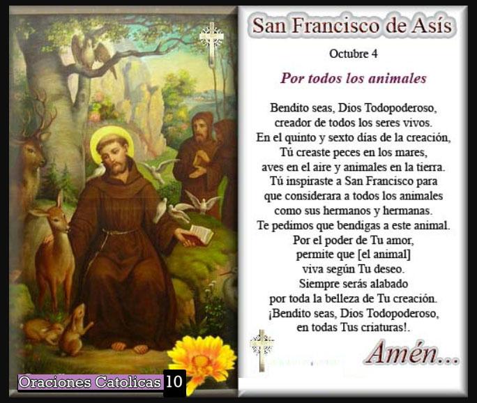 santo francisco de asis